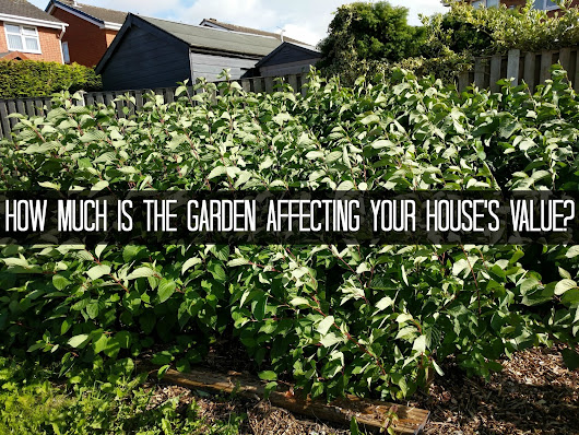 Finance Fridays – How much is the garden affecting your house's value?