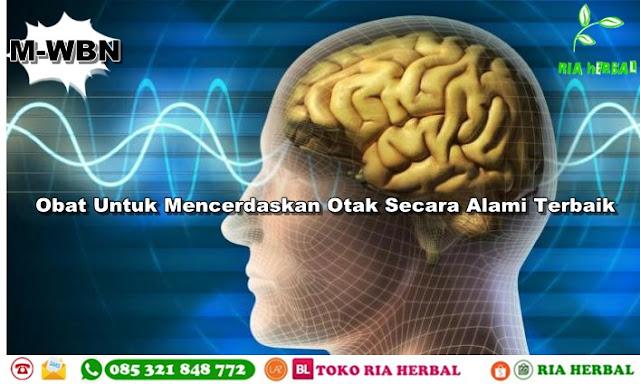 obat-untuk-mencerdaskan-otak-secara-alami-terbaik
