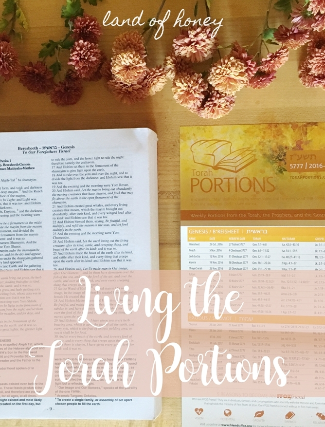 Living the Torah Portions - crafts, recipes, and ideas | Land of Honey
