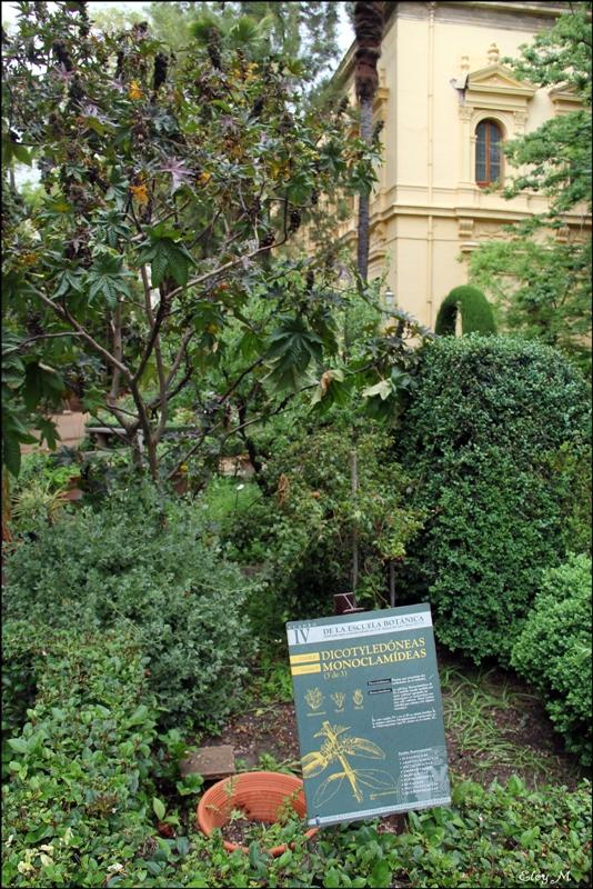 Mirablog de granada jard n bot nico de la universidad de for Jardin botanico granada precio