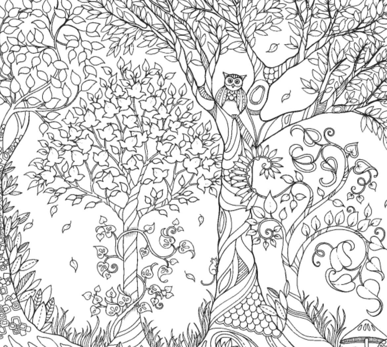 L Arm Chair Du Monde Secret Garden Coloring Book Review