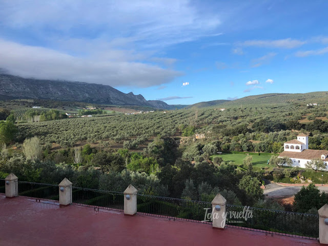 Hotel Convento la Magdalena vista desde restaurante