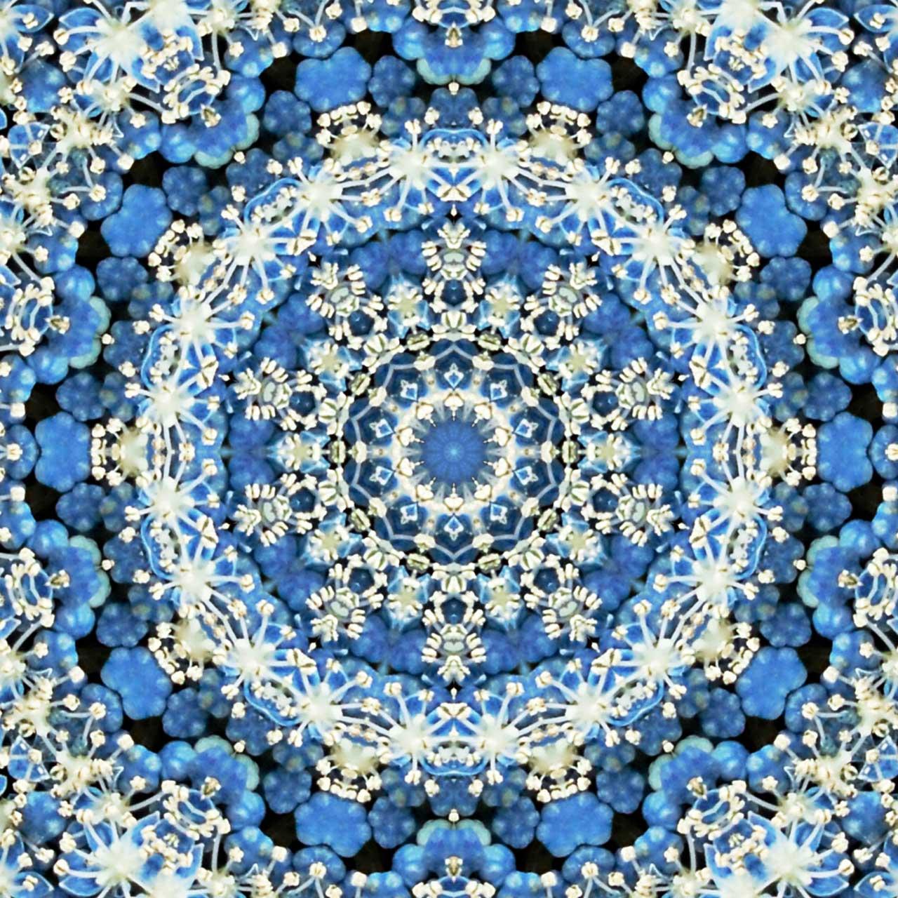 Kaleidoscope H3 by Jeanne Selep