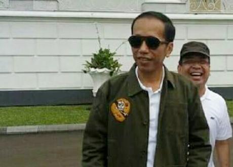 Presiden Jokowi Minta Ormas Pemuda Jadi Benteng NKRI