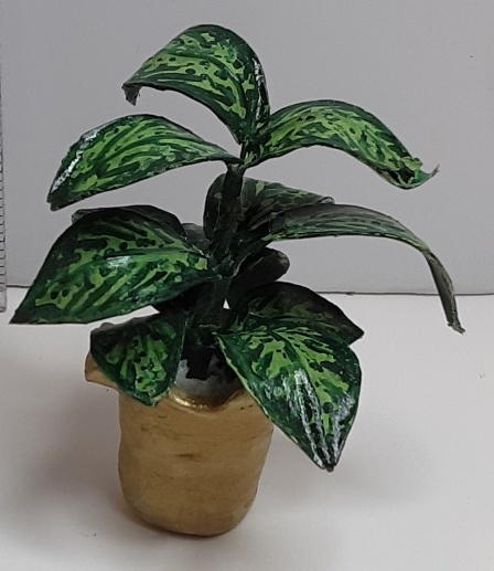 DBK Designs - Dumb Cane