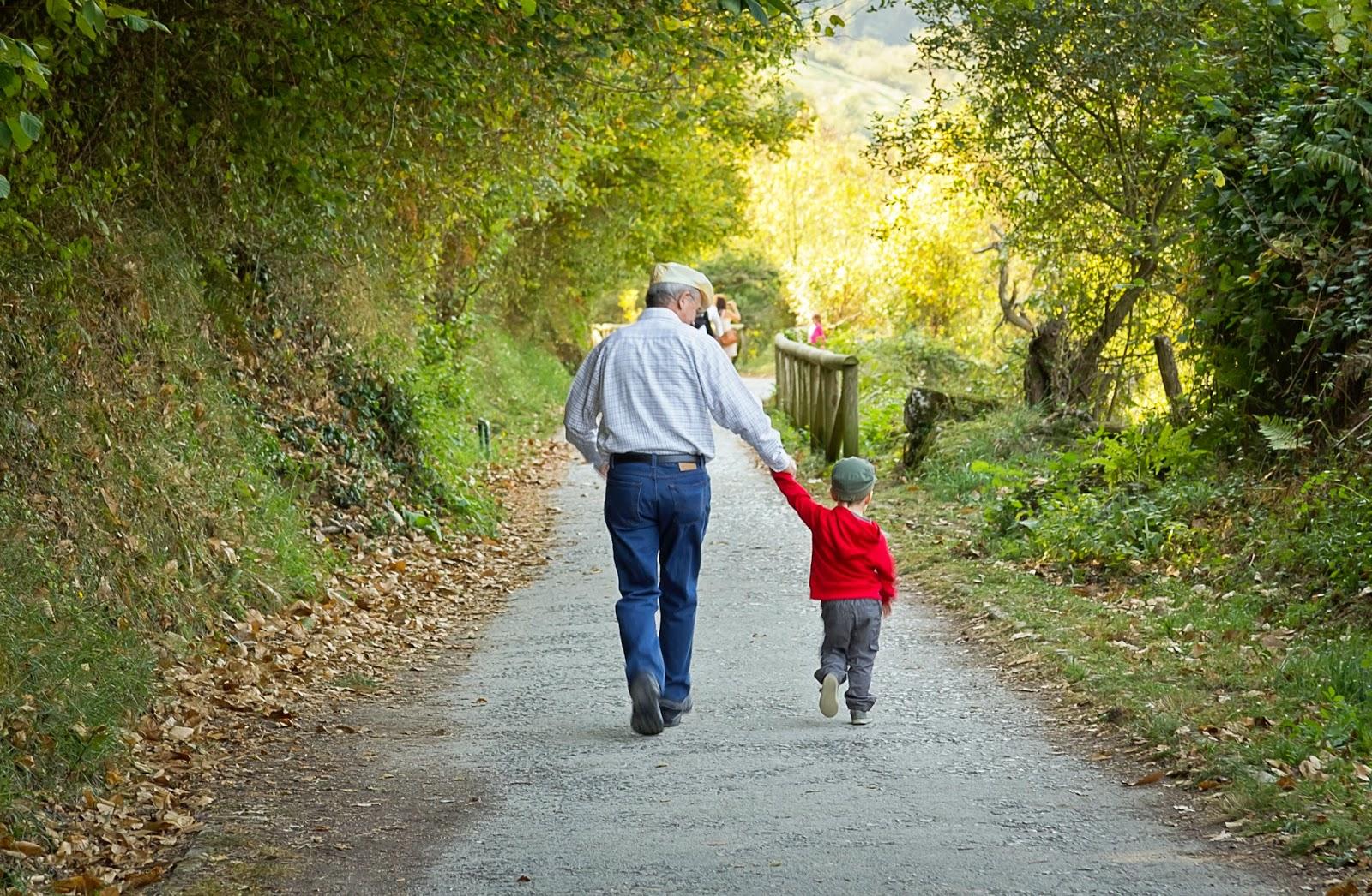 Society of Certified Senior Advisors: Grandparents Raising