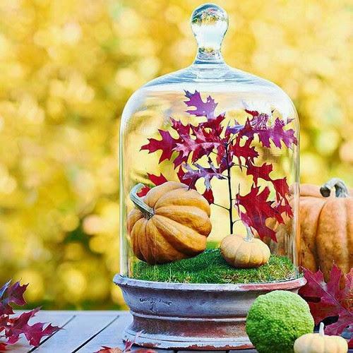 riflessioni sull'autunno