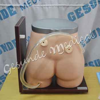jual simulator colostomy