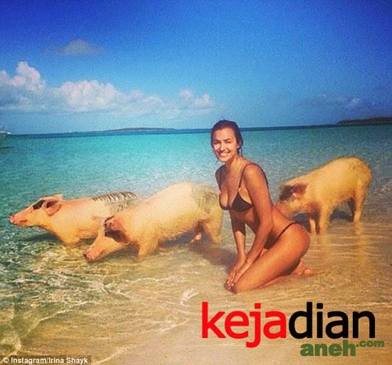 irina shayk and pig