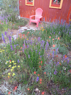 Save the date - Landscaping with Colorado Native Plants