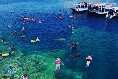 paket wisata ke pulau menjangan diving ,pulau menjangan snorkeling ,pulau menjangan via banyuwang