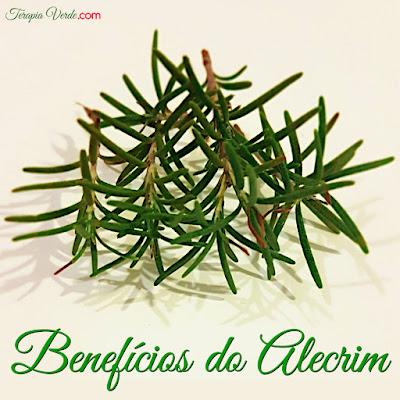 Benefícios do Alecrim