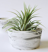 https://www.etsy.com/fr/listing/259949202/airplant-le-titulaire-marbre?ref=related-5