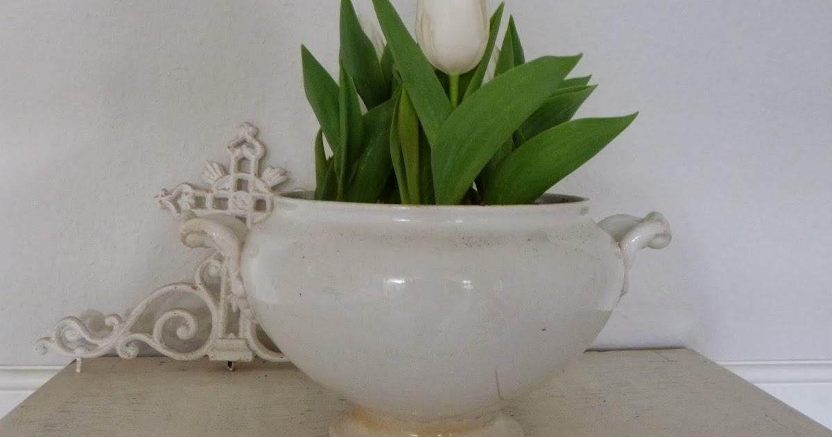 Lilleweiss: Einfach Weiss