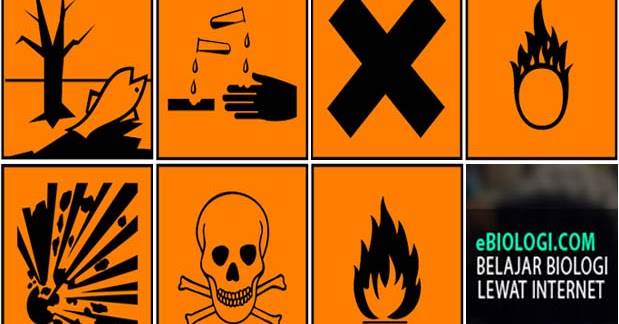 Contoh Zat Kimia Contoh Kr
