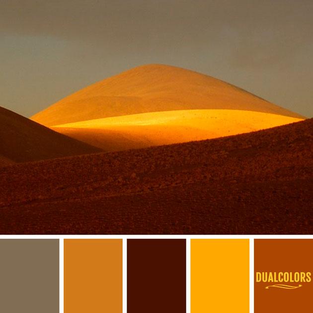 color_paleta_254