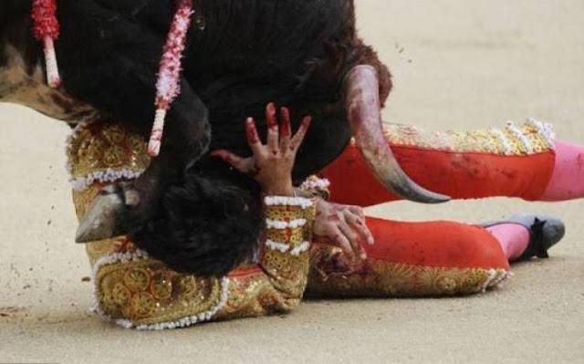 ثورٌ يقتل مصارعاً على الهواء مباشرة..! الفيديو غير مناسب لأصحاب القلوب الضعيفة !!