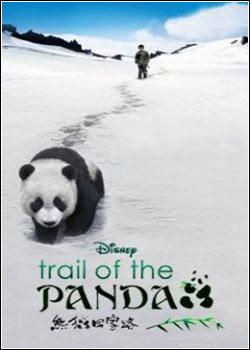 Na Trilha do Panda Dublado