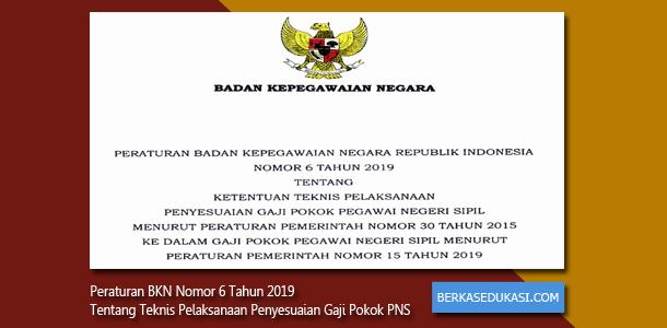 Peraturan BKN Nomor 6 Tahun 2019 Tentang Ketentuan Teknis Pelaksanaan Penyesuaian Gaji Pokok PNS (Pegawai Negeri Sipil)