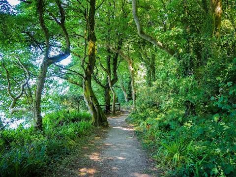 Seven Head Walk: Jak jsem ušla 42 km za jeden den?