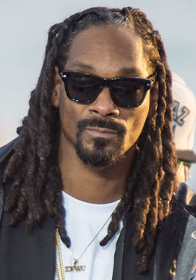 snoop job net worth