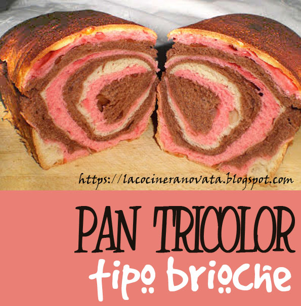 Pan tricolor tipo brioche la cocinera novata cocina receta gastronomia panarra panaderia pan pasta de chicle cacao