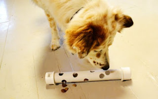 Interactive Dog Feeder Toy