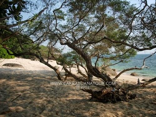 pulau putri belinyu bangka