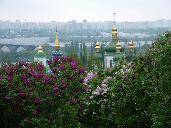 Ukraine Adoption by Grace
