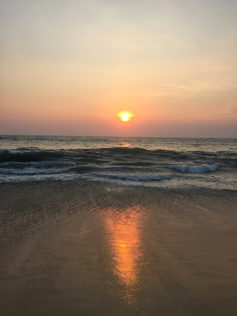 best things to do in kochi india