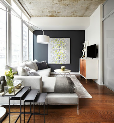 black and white relaxing color combinations for living room