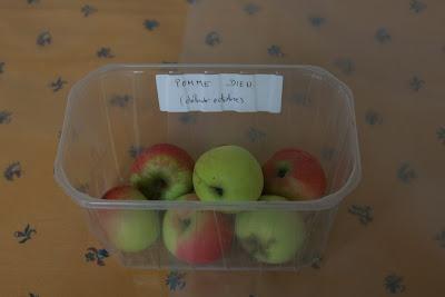 Pommes du pays de redon