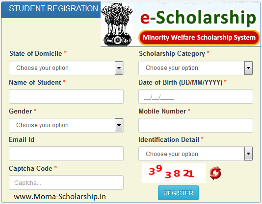 moma scholarship online registration