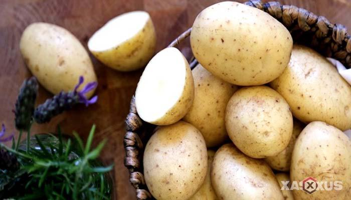 Cara mengobati sakit mata dengan kentang