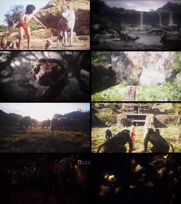 The Jungle Book 2016 Dual Audio Hindi 480p HDTS
