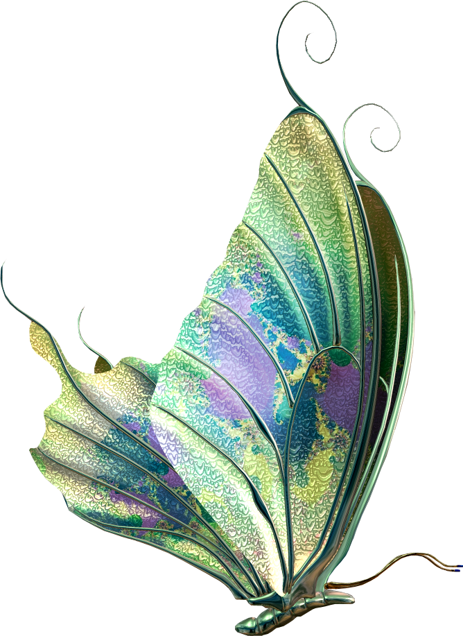 Beautiful Butterfly Images Oh My Fiesta! In English