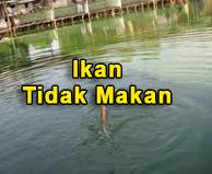http://kolamhariankita.blogspot.com