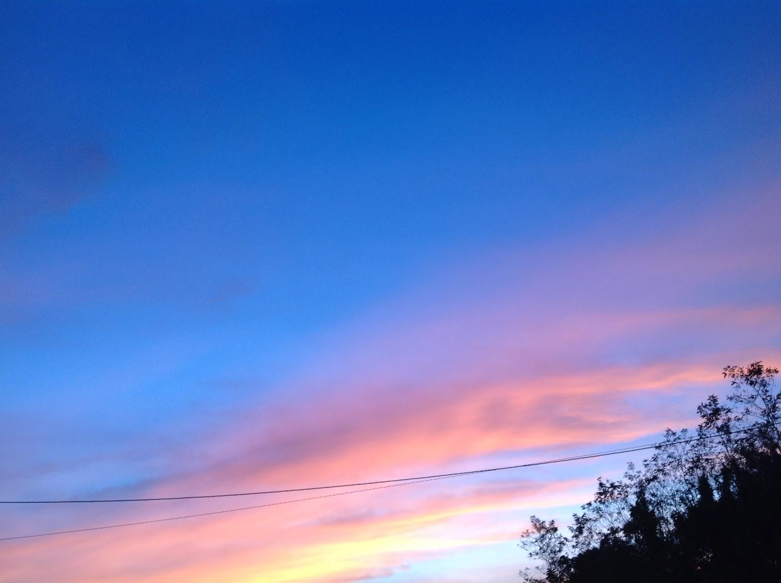 ミルの日記: 夕方、空の色