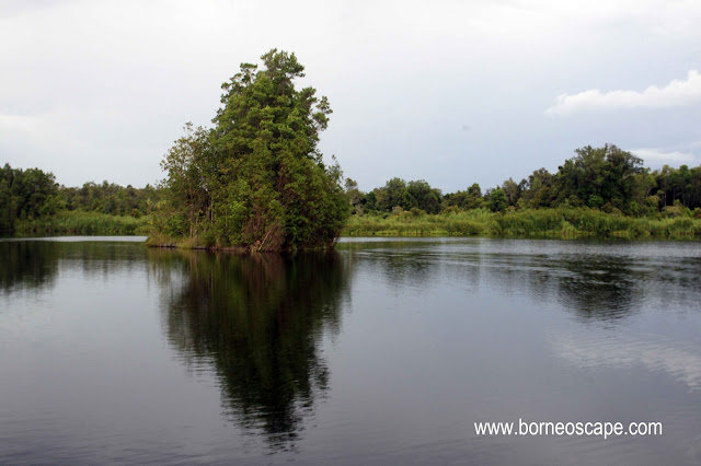 floating island, meliau, melembah, fishing spot,