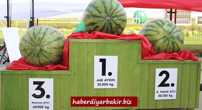 Diyarbakır'da kültür ve karpuz festivali düzenlendi