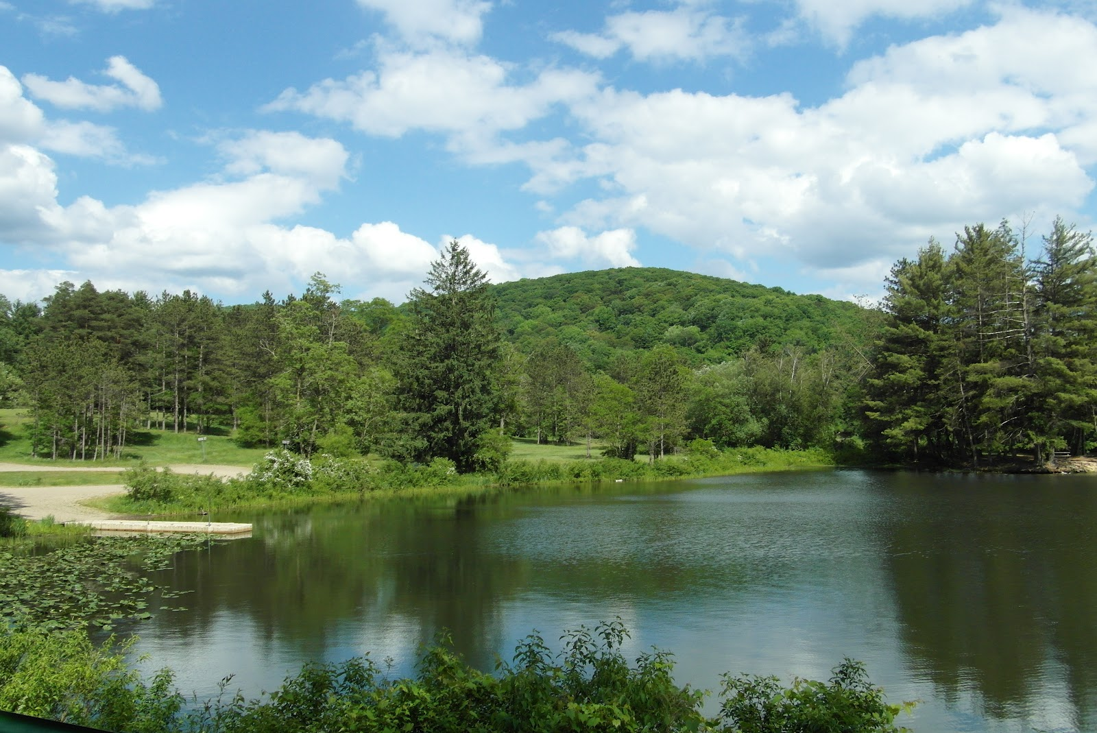 Our Frank Adventures Allegany State Park New York State