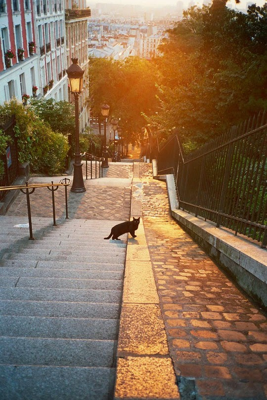 Montmartre Paris steps