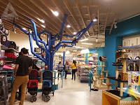 projeto arquitetura circulação loja pet shop Ar Mar