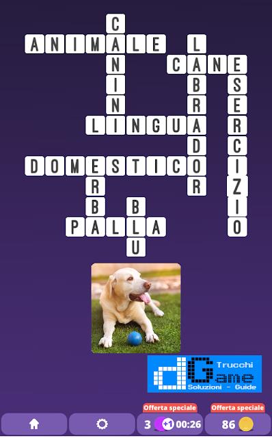 Soluzioni One Clue Crossword livello 13 schemi 8 (Cruciverba illustrato)  | Parole e foto