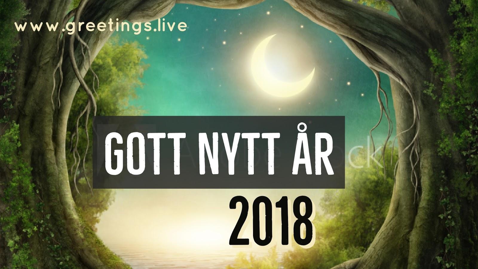 Fantasy Happy New Year In Swedish Language