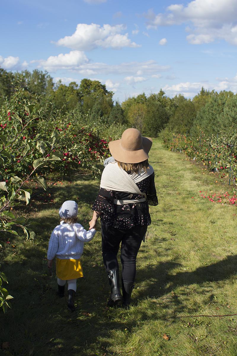 Apple Orchard Edmonton
