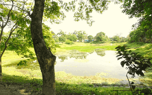 Water Pond Of Majuli Island