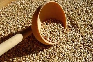 Comment cuire du quinoa ?