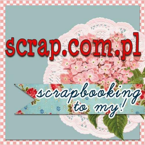 www.scrap.com.pl