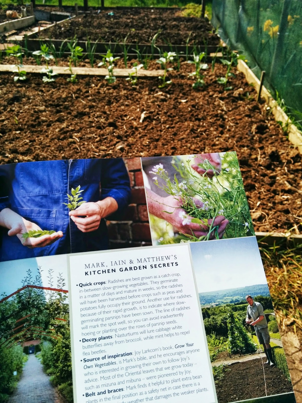 grow our own an ecotherapy blog april 2014